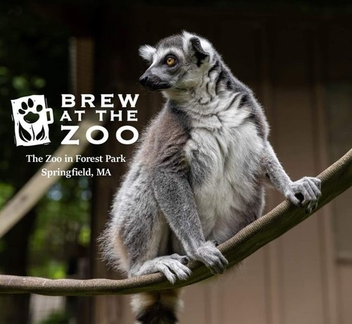 BREW AT THE ZOO AT FOREST PARK